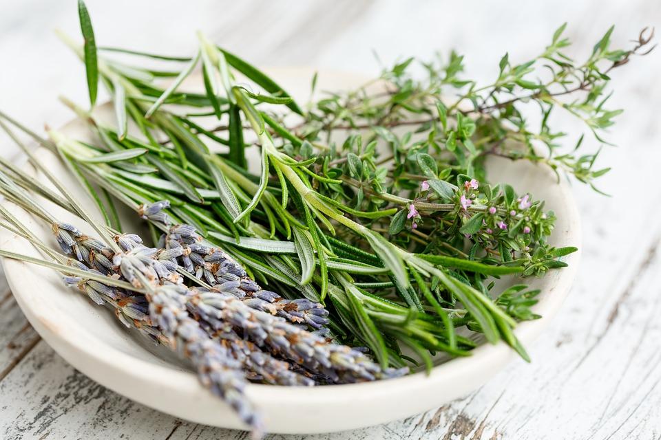 Jaké bylinky pomáhají zhubnout